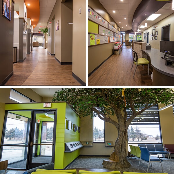 A collage showing the different three areas of our dental office, the first shows the corridors with different paintings and ornaments, the second our reception room and the last our main entrance with a large tree and the waiting room